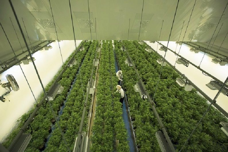 Canopy Growth shareholders approve proposed acquisition of Acreage Holdings