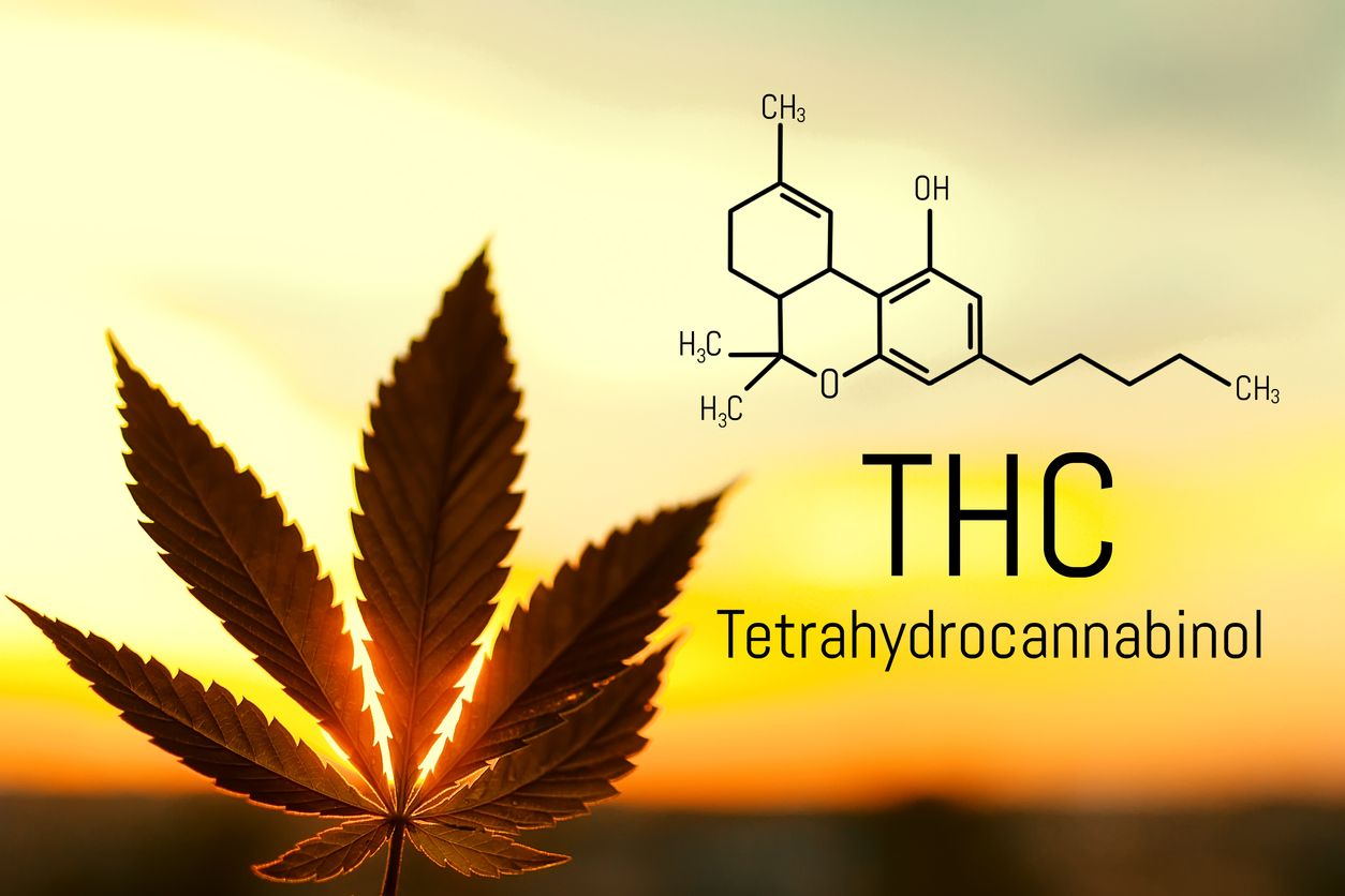 How to make topical THC oil for pain