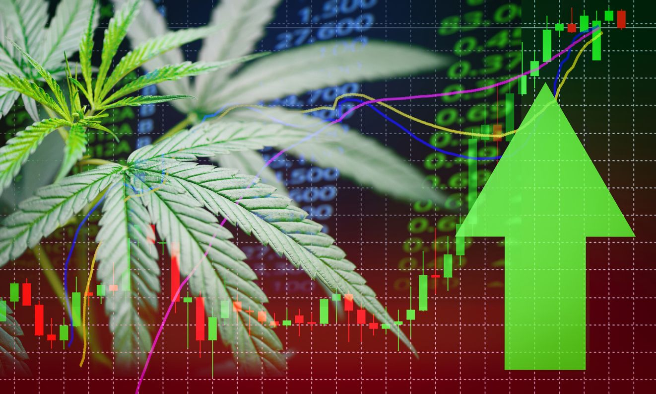 Is there any difference between American and Canadian cannabis trends
