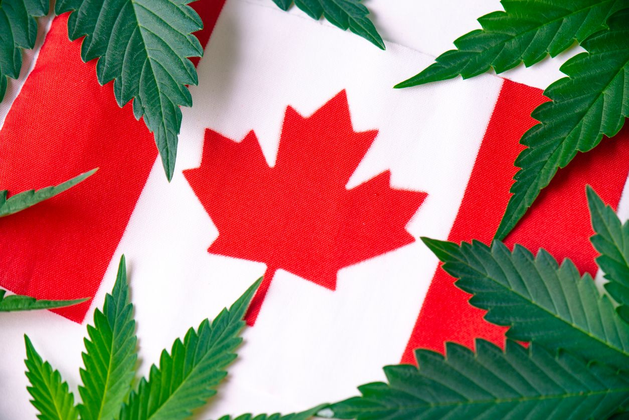 10 Things that can still get cannabis lovers in trouble in Canada