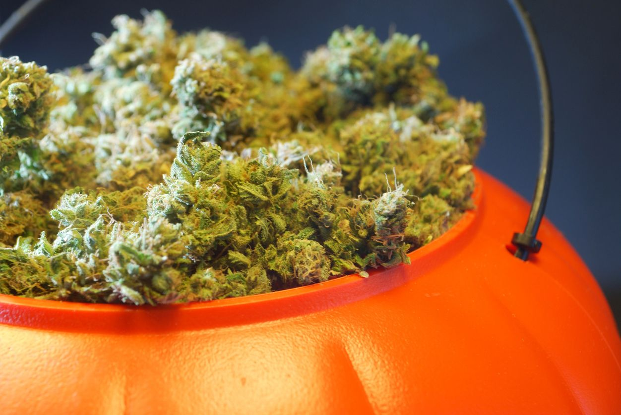 5 DIY cannabisthemed costumes just in time for Halloween