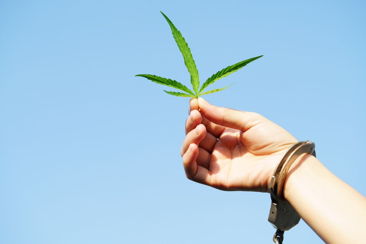 5 Ways to show your support for cannabis prisoners