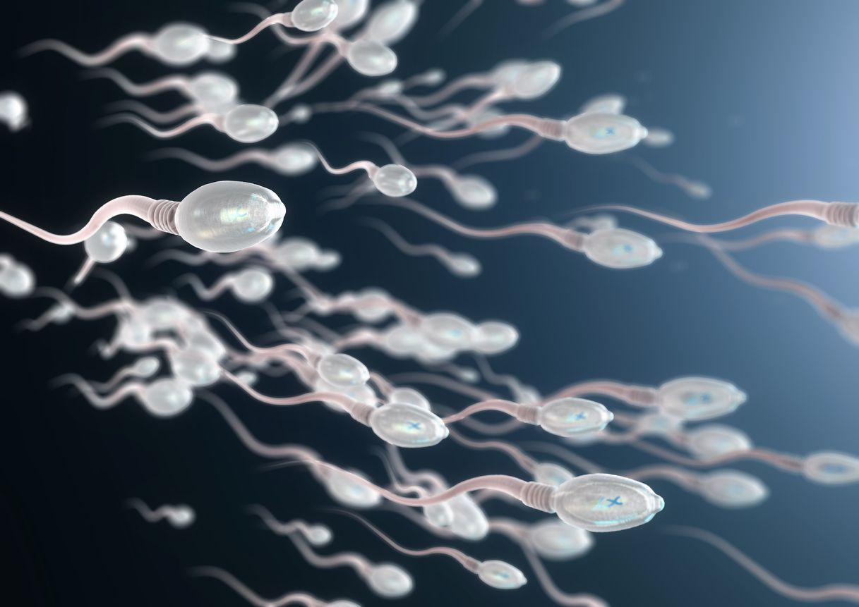 According to new research weed might boost sperm count