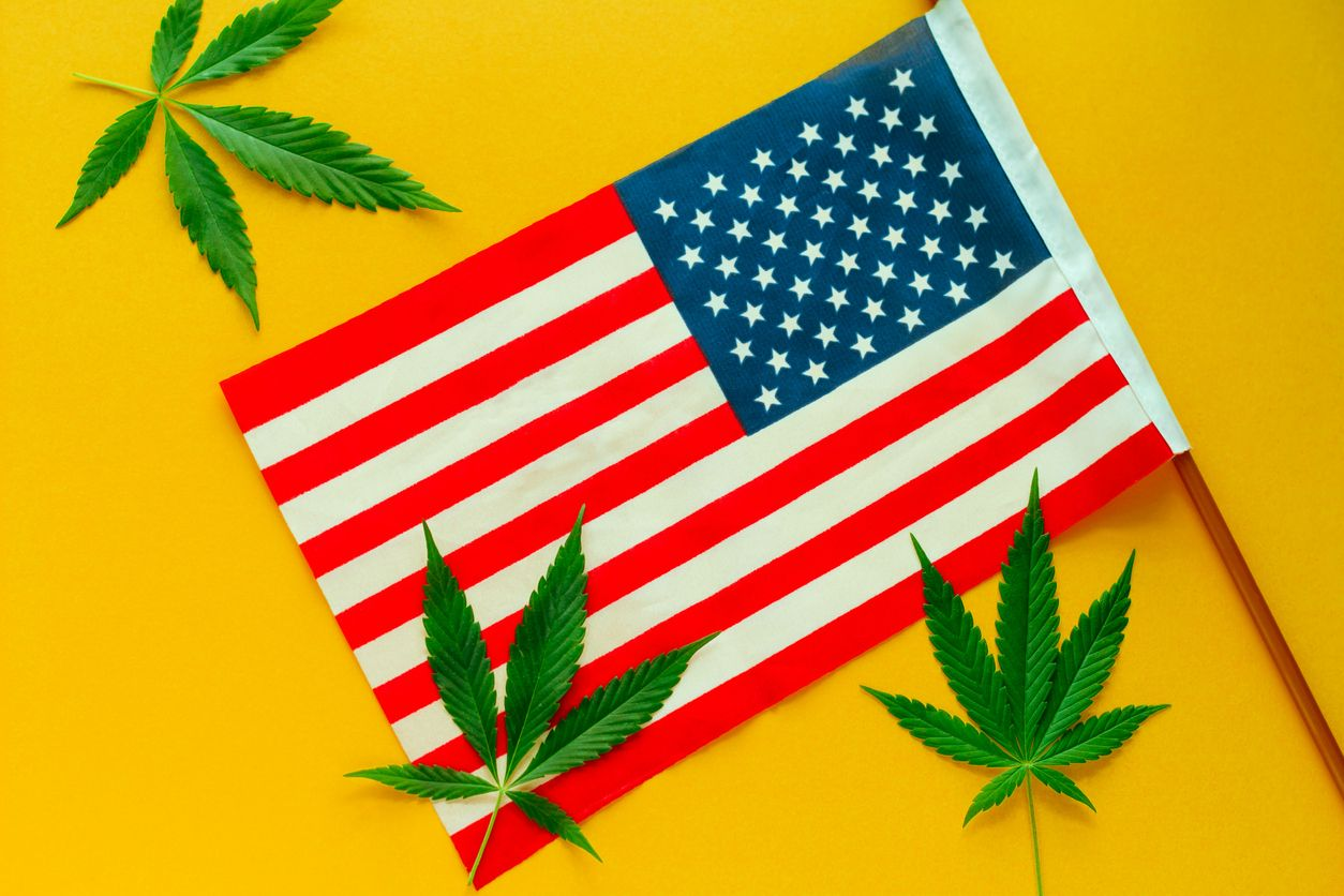 Canopy Growths CEO predicts the future of cannabis in the US