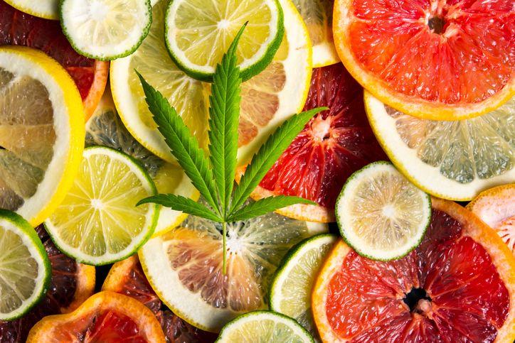 Choosing the best cannabis strains for their taste