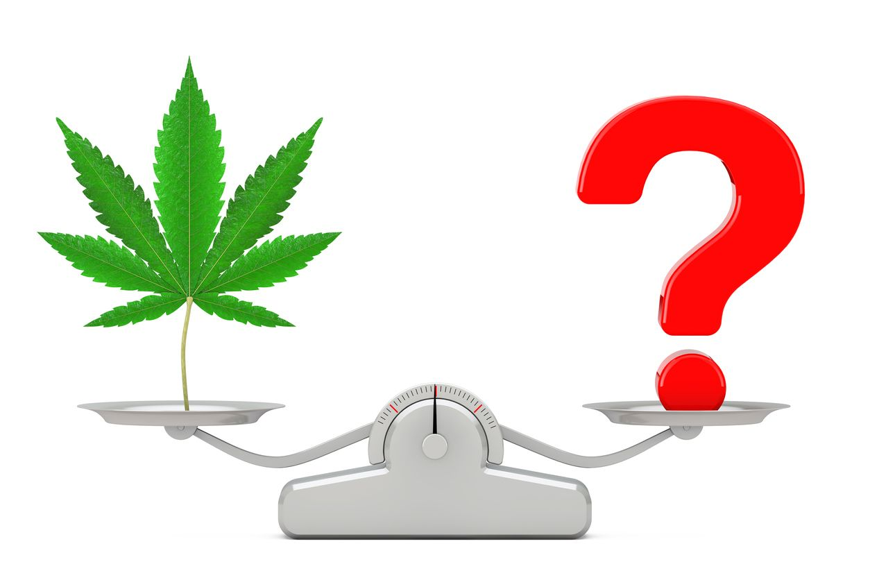 COVID19 Cannabis etiquette questions and answers