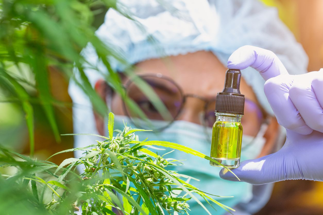 How large donors are influencing current cannabis research
