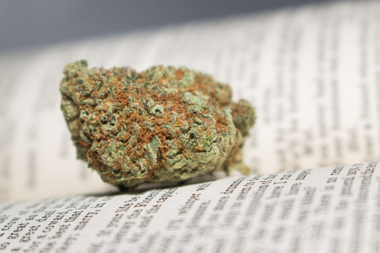 How we educate people about cannabis could make or break the industry