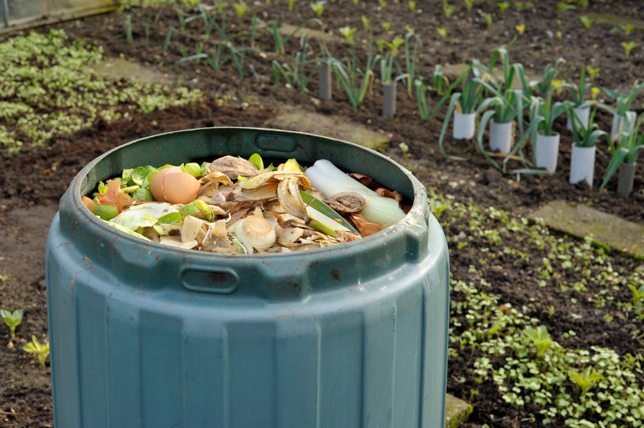Instead of tossing food scraps why not turn them into fertilizer