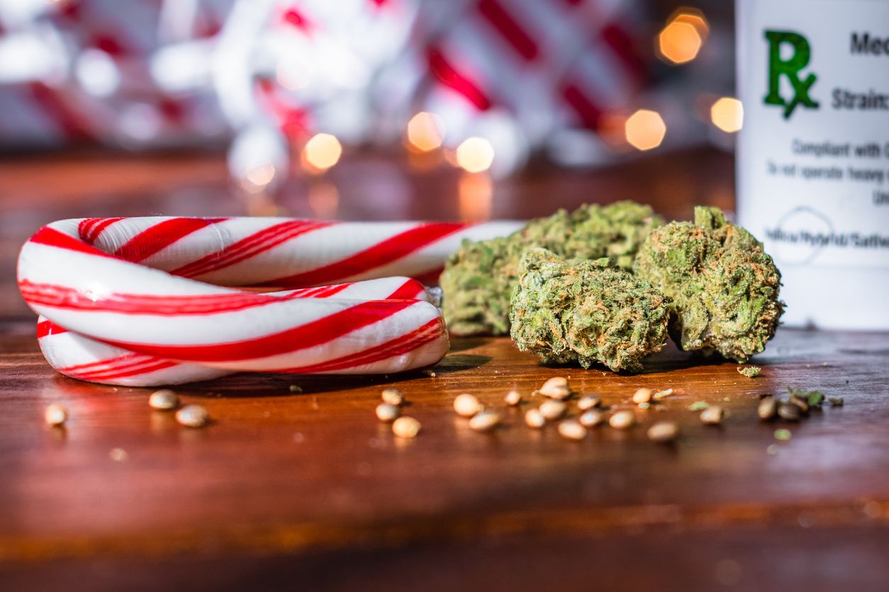 Highly Medicated Homemade Candy Canes Cannabis Wiki He recently joined fox news rundown host chris foster to discuss his new book talking to goats: highly medicated homemade candy canes