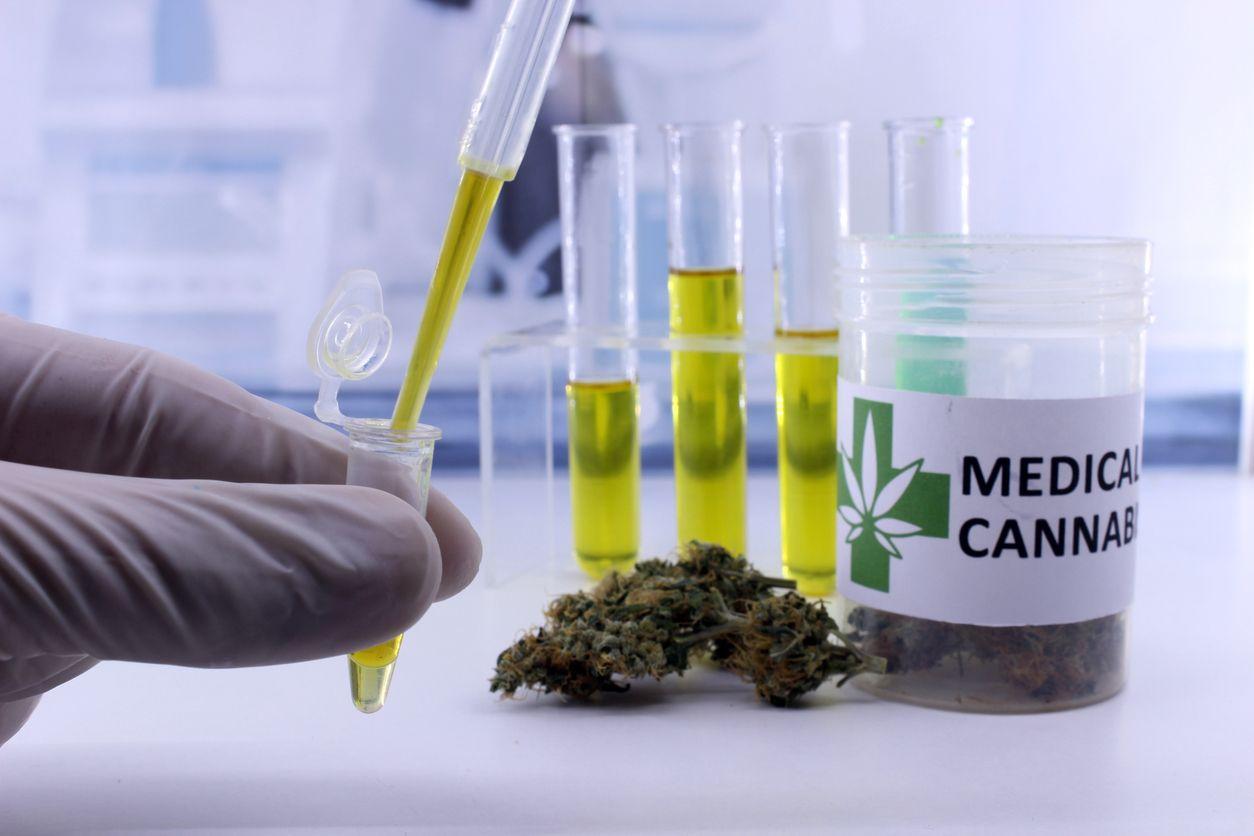 The University of Georgia to study the effects of medical marijuana on chronic pain