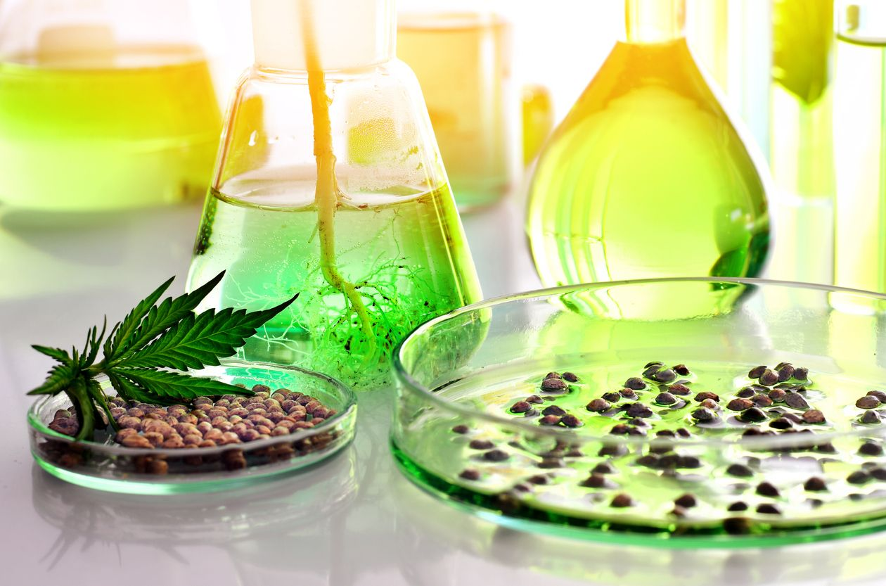 3 Million in funding for cannabis research is now available through CMCR