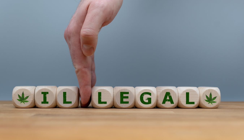 Study shows the effects of recreational marijuana legislation on crime rates
