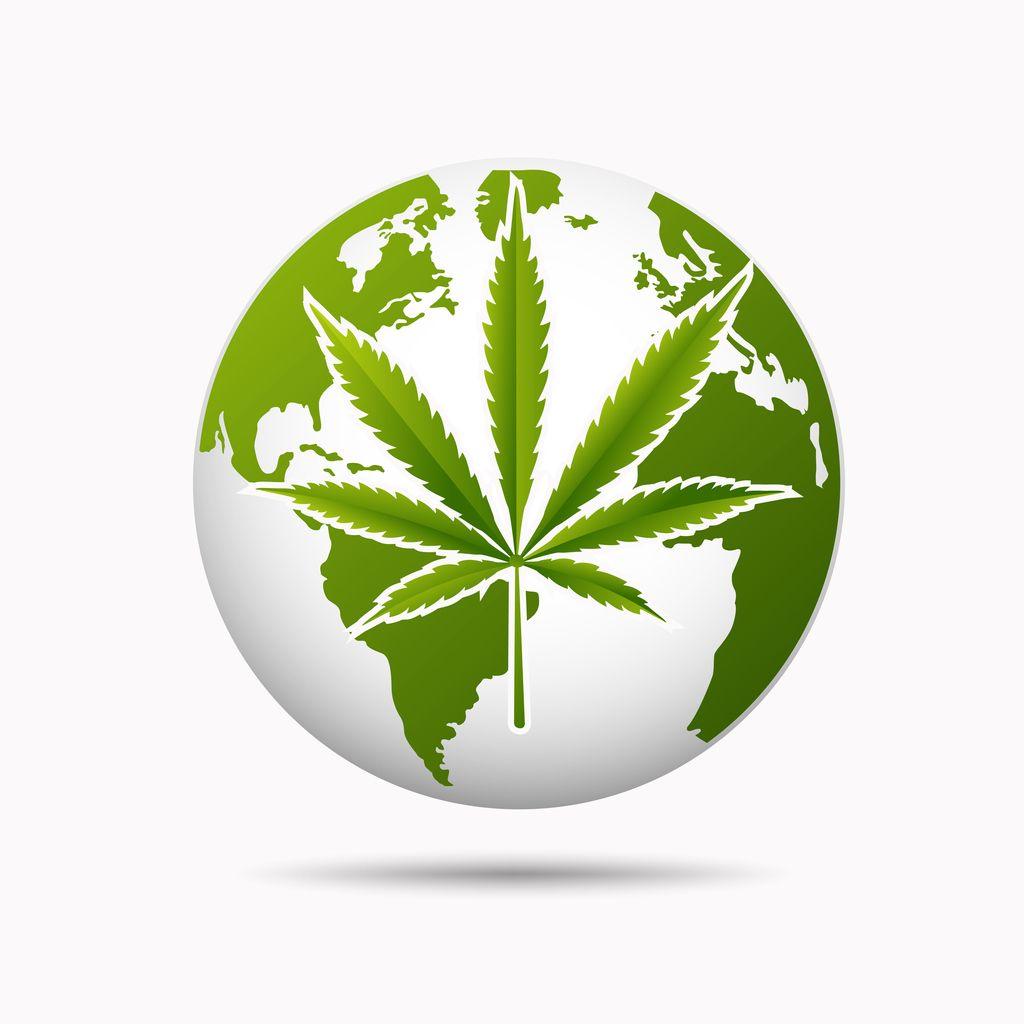 Marijuana Legalization Across the Globe