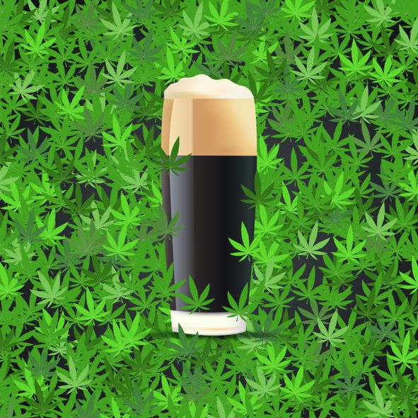 10 reasons why recreational marijuana is a safer alternative to alcohol