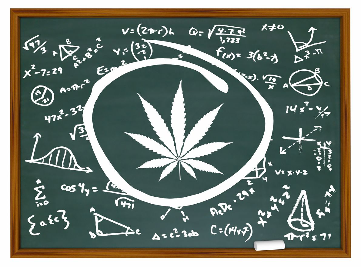 Why cannabis education should get to the public