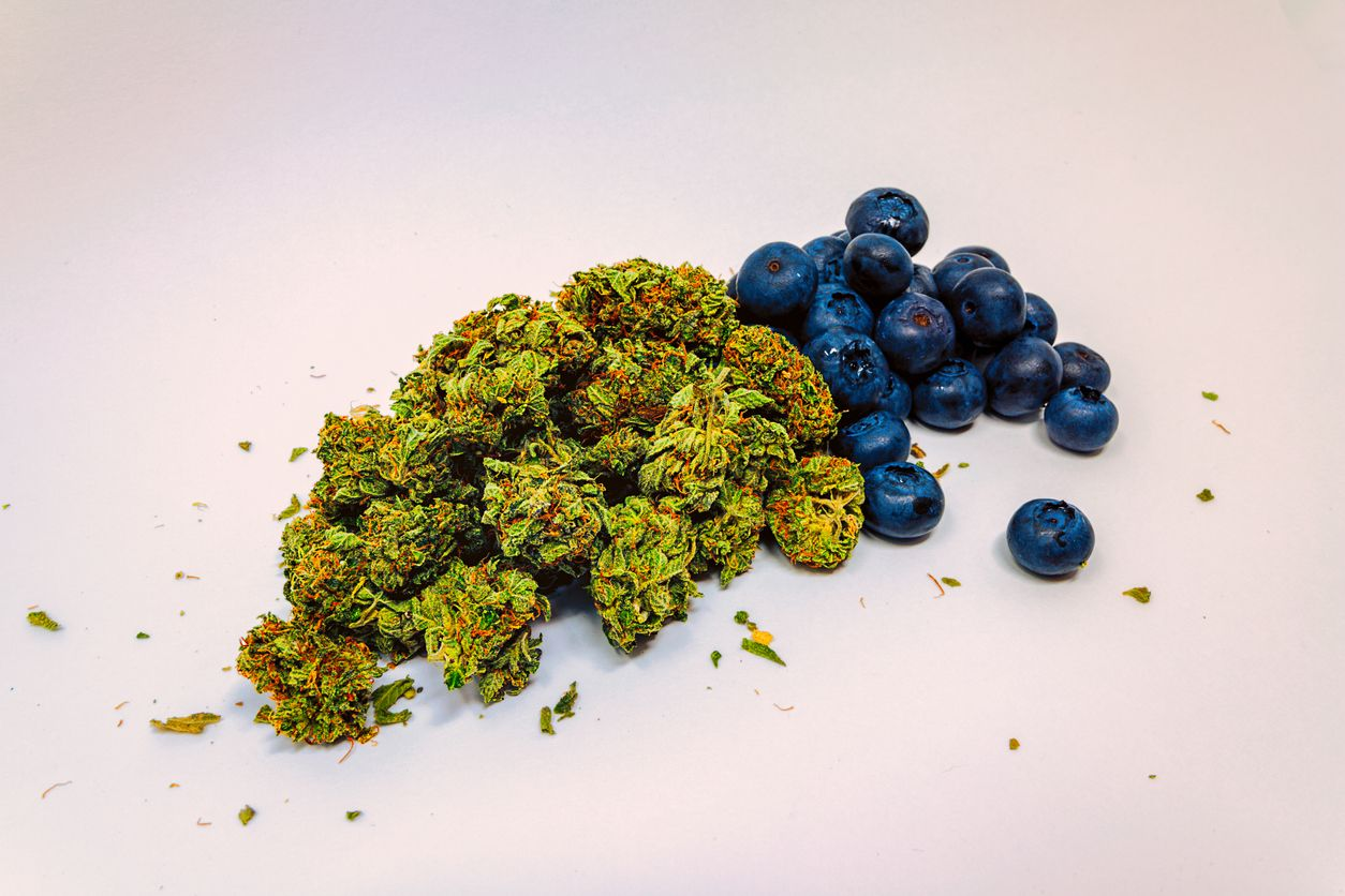 The best Haze strains with a fruity flavor for the cannabis connoisseur