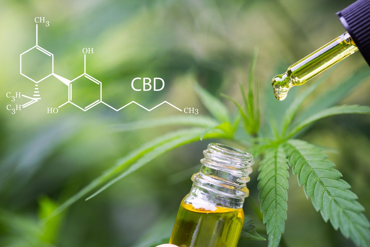 Everything You Need to Know About How to Use CBD Oil