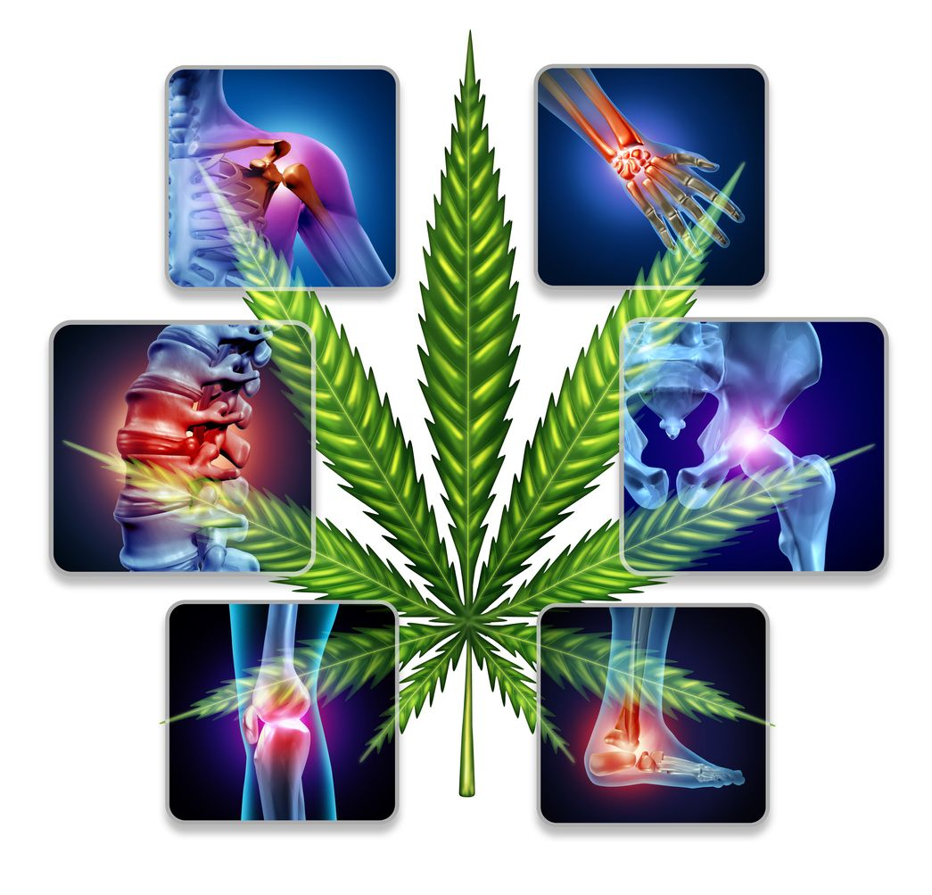 Using marijuana for pain treatment