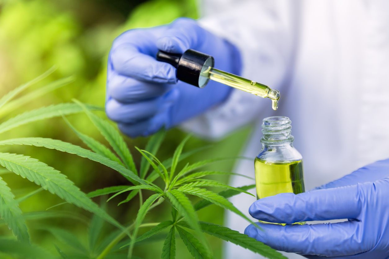 CBD Oil Dosage How Much Should You Take