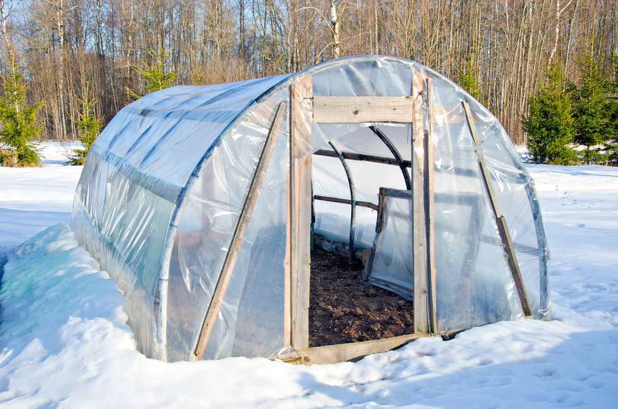 The pros and cons of growing marijuana in a greenhouse through the winter