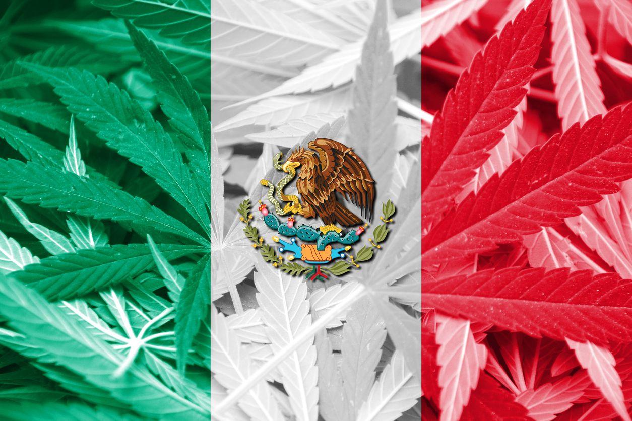 Mexico hesitates to pass marijuana legislation