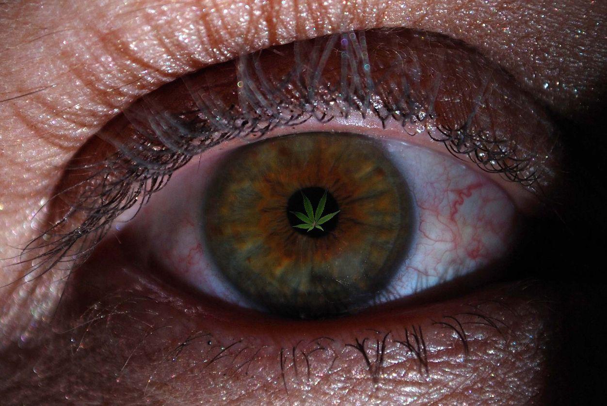 Marijuana for Glaucoma Best Strains