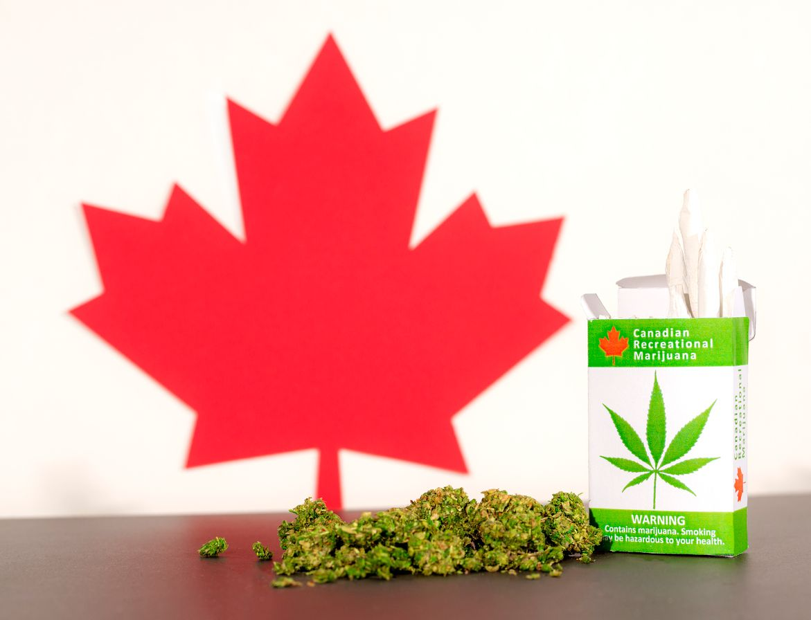 Cannabis enthusiasts growing frustrated with lack of access to legal products in Canada