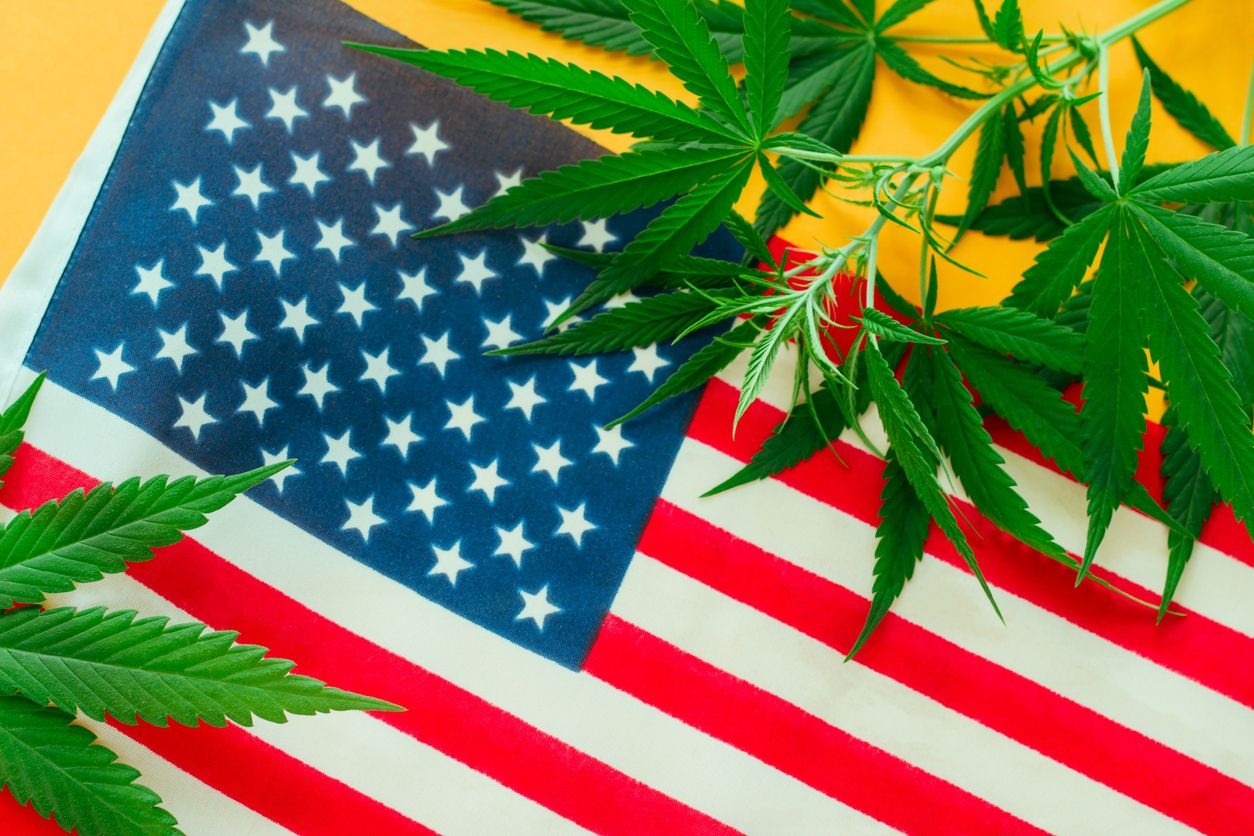 Joe Kennedy announces cannabis reform hearing