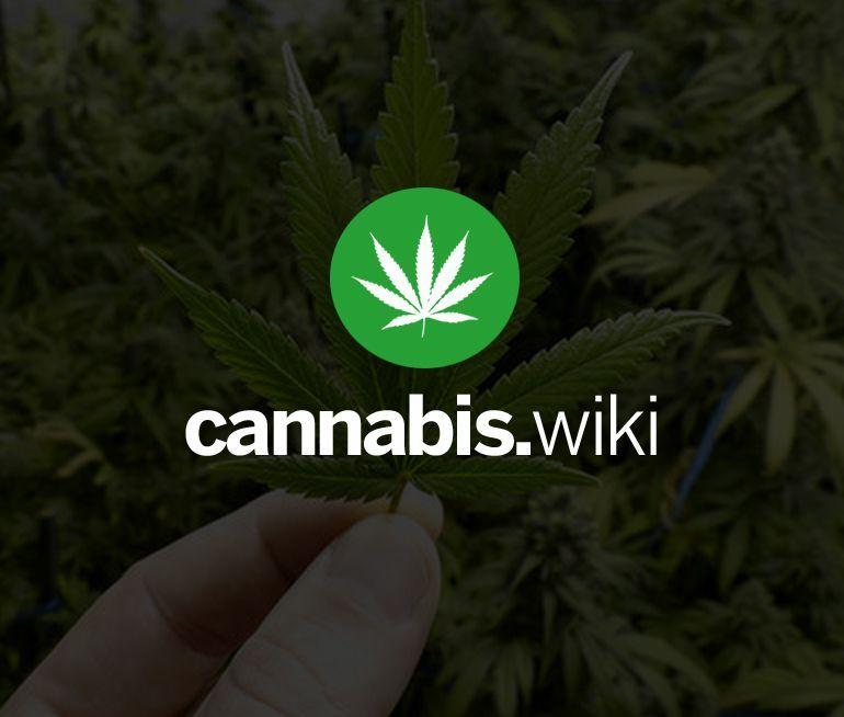 Ohio AG rejects language in legal marijuana petition