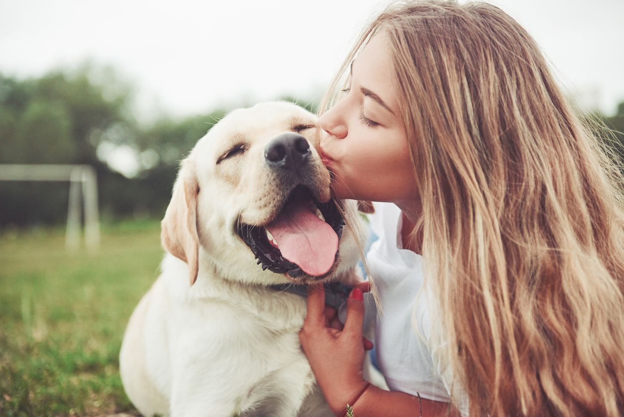 Survey reveals 9 out of 10 participants would recommend CBD for pets