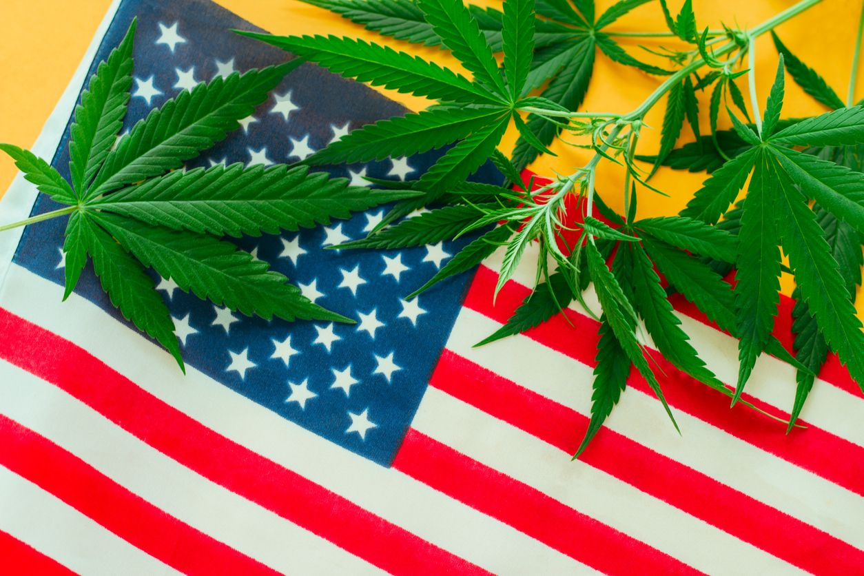 The 10 US states with the most cannabis dispensaries