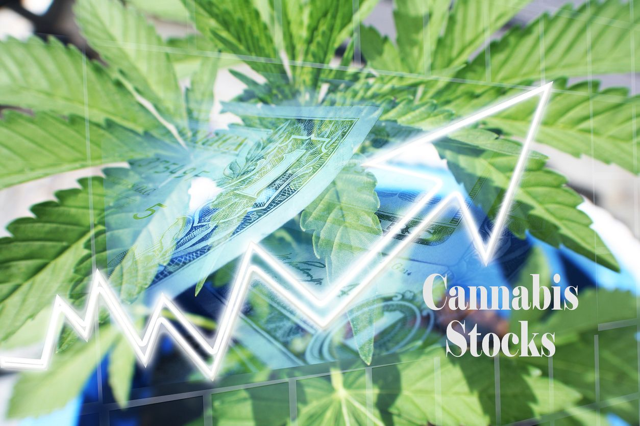 The bestrated pot stocks of 2020