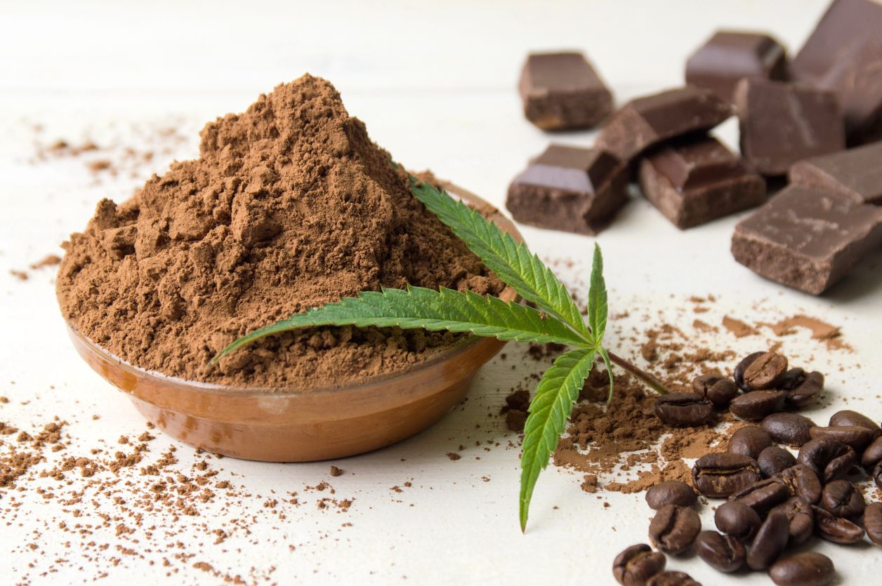 The best strains of weed that taste just like chocolate