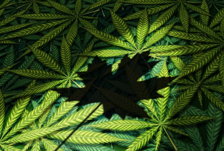 The Canadian government is blocking all cannabis imports