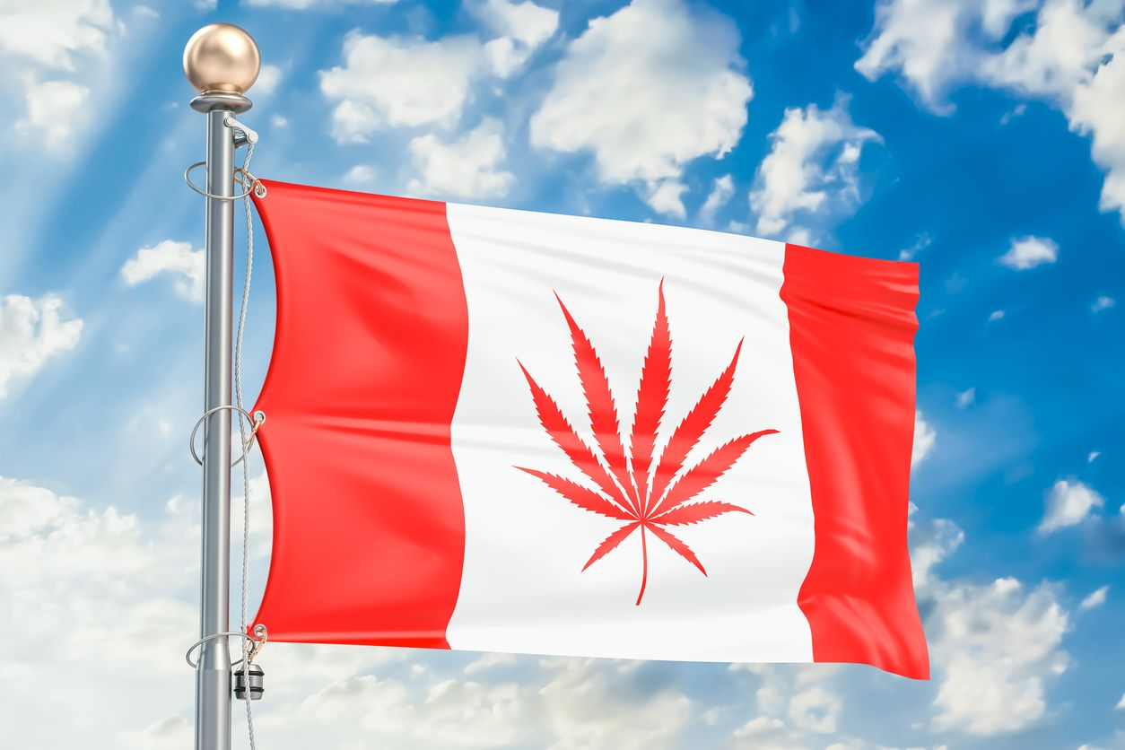 The first new Canadian cannabis brand of 2021
