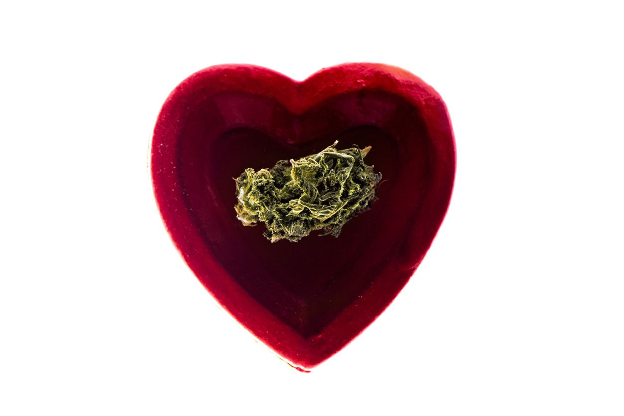 Weed strains that can help to take the edge off this Valentines Day