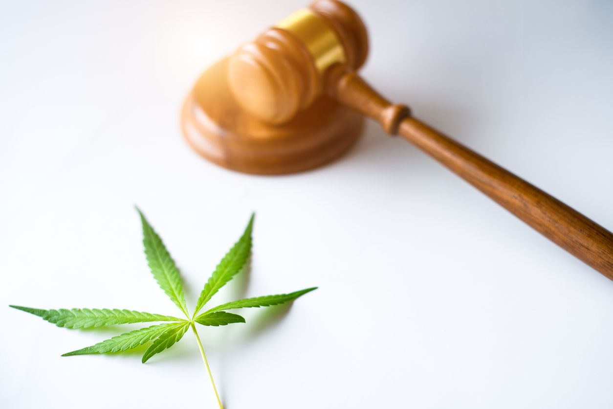 Why racism plays a significant role in our cannabis laws