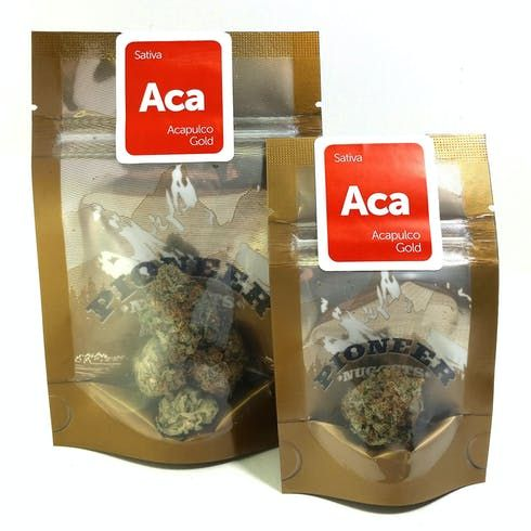 feature image Acapulco Gold by Pioneer Nuggets