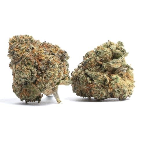 feature image Cookie Kush