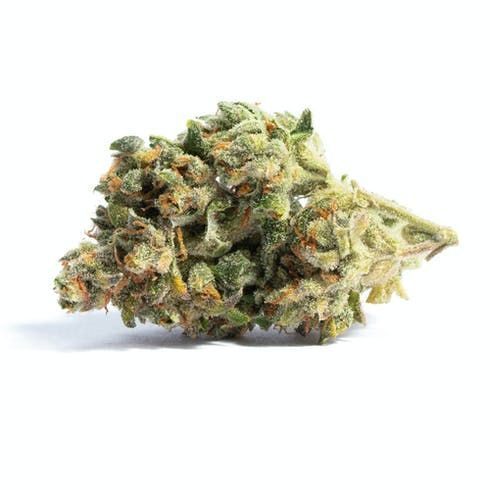 feature image Acapulco Gold by Landrace