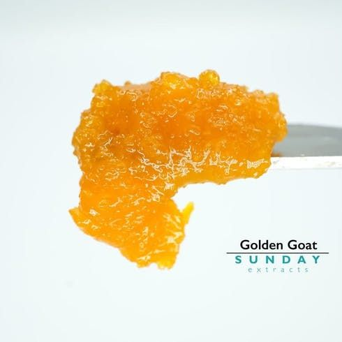 feature image 1g Concentrate Cured Resin - Golden Goat