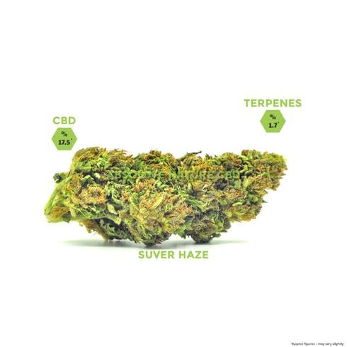 feature image Absolute Nature - 1g Suver Haze