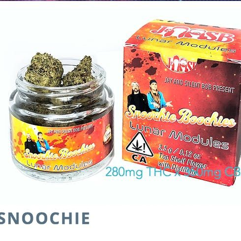 feature image  Jay and Silent Bob - Snoochie Boochies