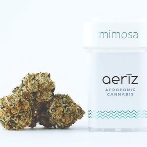 feature image Aeriz Pre-Pack Eighth Jar Mimosa