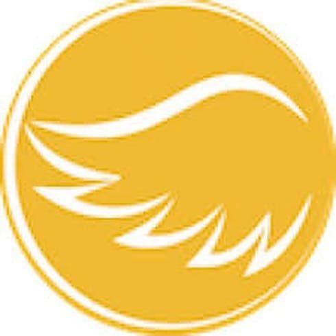 feature image *Tincture - Angel CBD Hemp Oil - Lemon Ginger - 2k mg CBD Drops