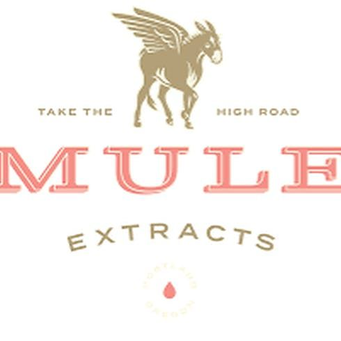 feature image MULE EXTRACTS: Bubba Kush CO2 Cartridge
