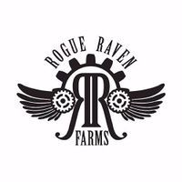 feature image Avi Shatter by Rogue Raven