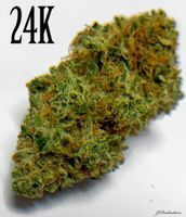 feature image 24K