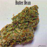 feature image Butter Bean